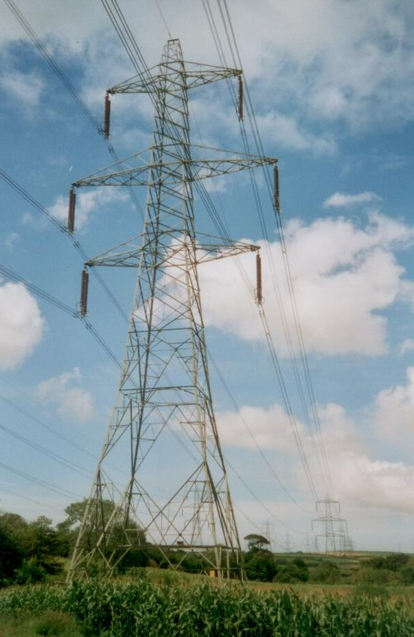 Image of an electricity pylon tree