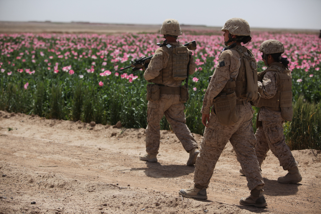 U.S. Marines assigned to the female engagement team (FET) of I Marine Expeditionary Force (Forward) conduct a patrol alongside a poppy field while visiting Afghan settlements in Boldak, Afghanistan, April 5, 2010. The FET, which is deployed in support of the International Security Assistance Force, is in the area to engage with local women in an effort to gain cultural awareness and ascertain family needs. (DoD photo by Cpl. Lindsay L. Sayres, U.S. Marine Corps/Released)