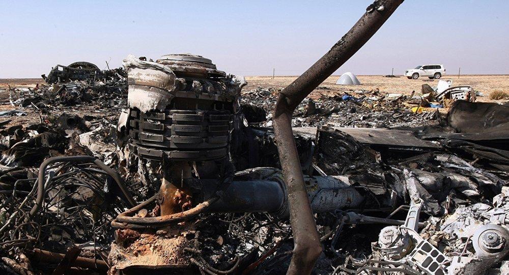 http://sputniknews.com/world/20151108/1029785601/a321-crash-investigation-media.html