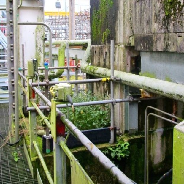 Weeds growing around derelict machinery at Sellafield nuclear waste dump.